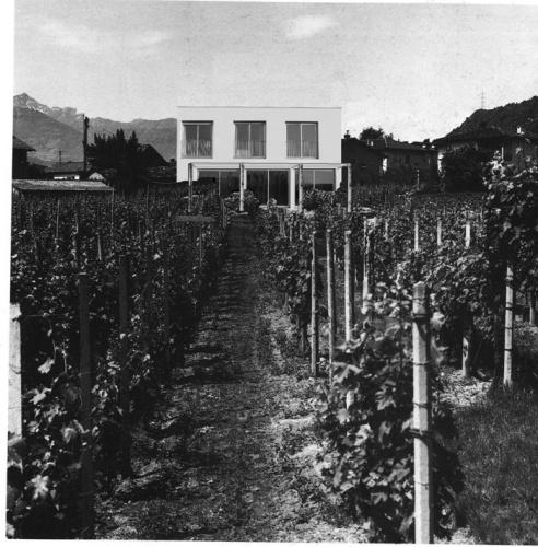 Maison dans les vignes : image_projet_mini_10280