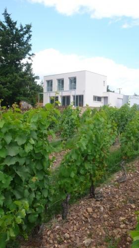 Maison dans les vignes : ch3.JPG