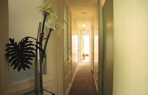 Réhabilitation d'un appartement Neuilly sur Seine : Neuilly - 778