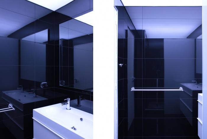 Altitude 240 la mulati re 69 une r alisation de cambiums for Configurer une salle de bain