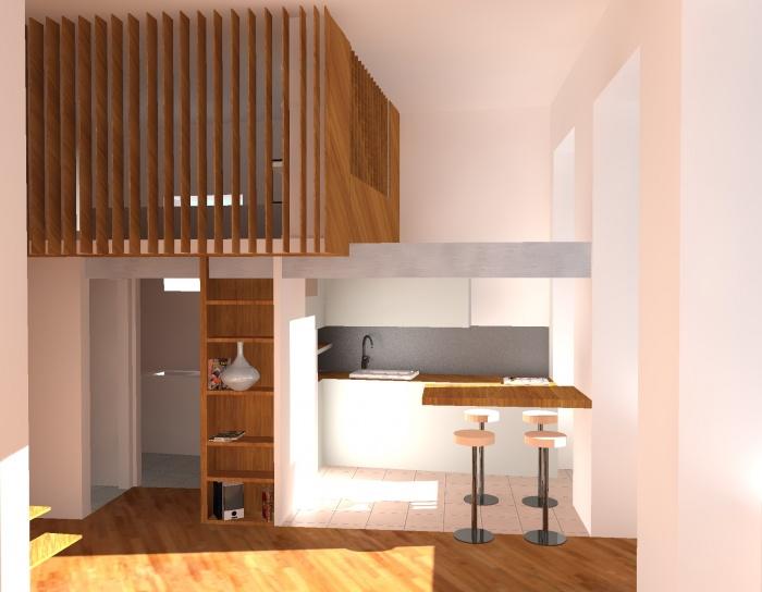 Réhabilitation et transformation d'un appartement à la Croix-Rousse